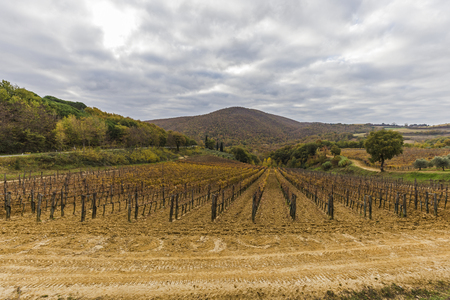 val dorcia: Val dOrcia in Tuscany, Italy