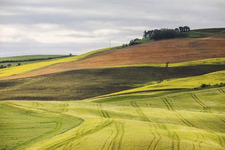Landscape in Val dOrcia in Tuscany, Italy. Stock Photo
