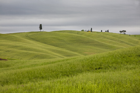 Hill in Val d'Orcia in Tuscany, Italy.