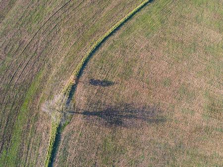 Plowed field in the Roman countryside.