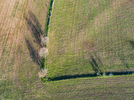 Aerial view of a plowed field in Italy.