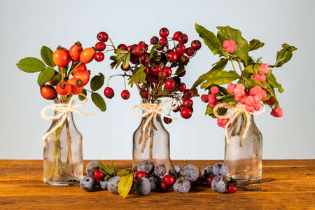Xmas still life composition: crystal clear jars with a cord ribbon bow and ornamental twigs of wild berries. Yellowish leaves and tiny little pinecones on a smooth rustic table. Woody soothing colors for a cozy season atmosphere. Reklamní fotografie
