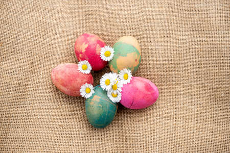 Natural colored eggs with daisies on jute fabric background.