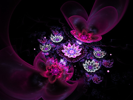 Abstract beautiful lotus flowers on black background. Fantasy fractal design for postcards or t-shirts. 3D rendering.