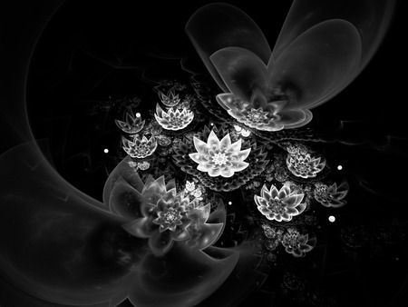 Abstract beautiful lotus flowers on black background. Fantasy black and white fractal design for postcards or t-shirts. 3D rendering.