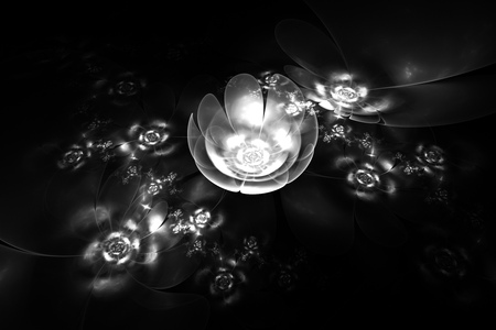 fractures: Abstract glowing monochrome rose flowers on black background. Fantasy black and white fractal design for posters wallpapers or t-shirts. Digital art. 3D rendering.