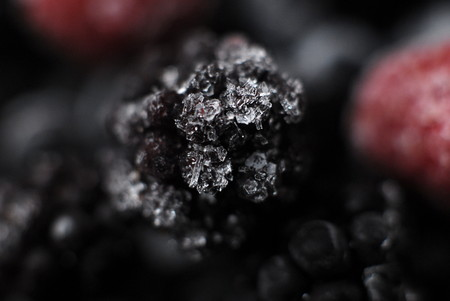 defrost: Frozen in ice fruits blackberry