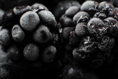 defrost: Frozen in ice fruits blackberry