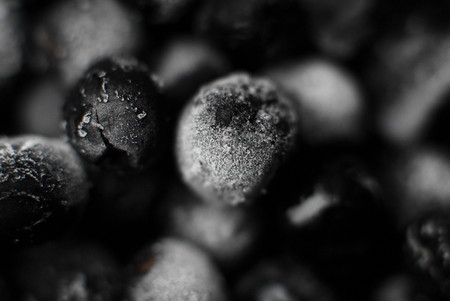 defrost: Frozen in ice fruits chokeberry