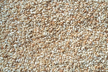 granule: Many grains of chickpeas (gramme) Stock Photo