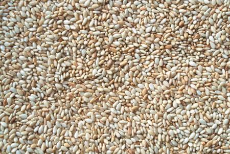 garbanzos: Muchos granos de garbanzos (gramo) Foto de archivo