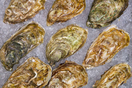 Many species of oysters are placed on the ice tray. Ordered as follows, Tsars Kaya, Normandie, Fine De Claire, Cadoret, Irish Premiun Oysters and Tia Maraa