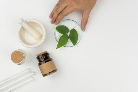 herbal medicine concept. Hand holding the watch glass with organic green leaves, a mortar and pestle, the bottles and test tubes on the white table in laboratory. 免版税图像