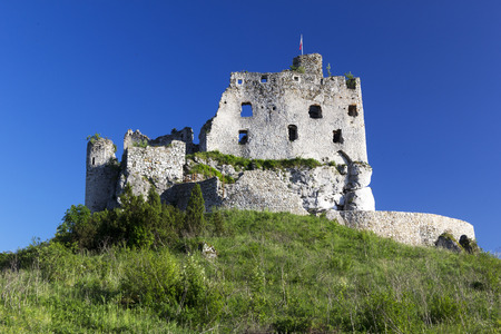 castle ruins in Mirow photo