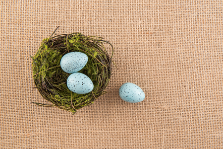 speckle: Blue Speckled Eggs Stock Photo