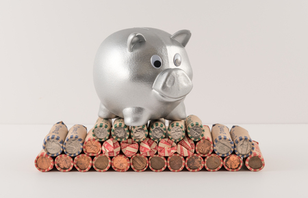 Silver Metallic Piggy Bank and Wrapped Coins