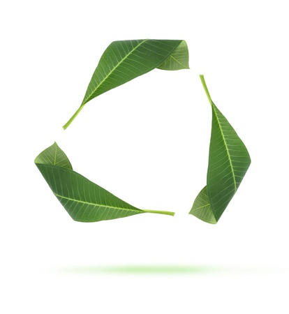 A Green Recycle Leaves icons Stock Photo - 10281267