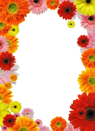 flower border: colorful flower frame isolated on white background  Stock Photo