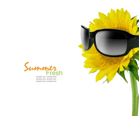 bee pollen: Sunglasses and sunflower isolated on a white Stock Photo