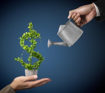 profiting: 2 Imprenditore e irrigazione pot (percorso in parte) Archivio Fotografico