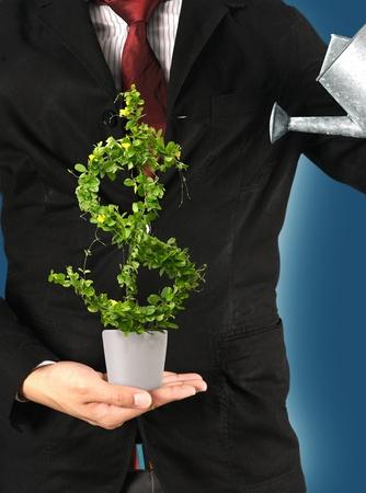 profiting: Uomo d'affari e irrigazione di un albero piatto con dollaro USA. Archivio Fotografico