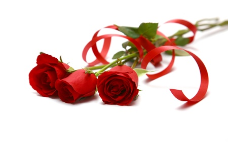 close roses and red ribbon on white. photo