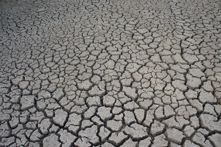 Close-up of earth cracked detail background. Stock Photo - 12857748