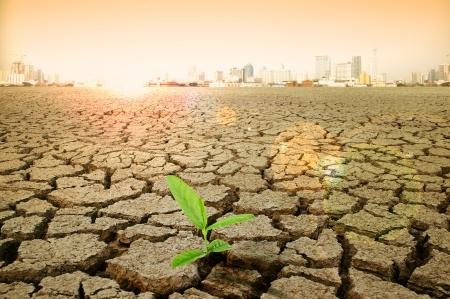 gebarsten aarde - concept beeld van de opwarming van de aarde. Stockfoto