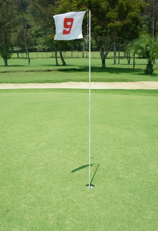 tourney: Flag and Flagstick with Shadow on a Golf Course Practive Green  Stock Photo