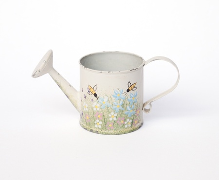 vintage watering can on white background  photo