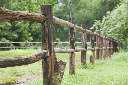 fence: close up, Old wooden fence on green meadow