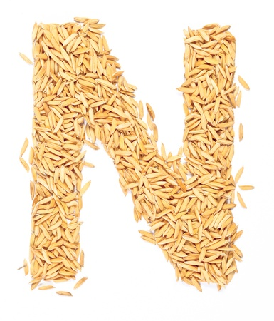 rice paddy: n, alphabet,Letter from Paddy rice on white
