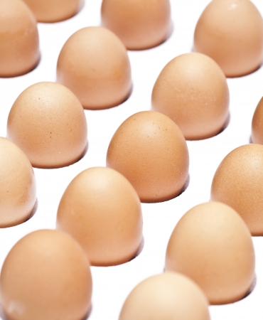 Closeup of many fresh brown eggs in white carton tray   photo