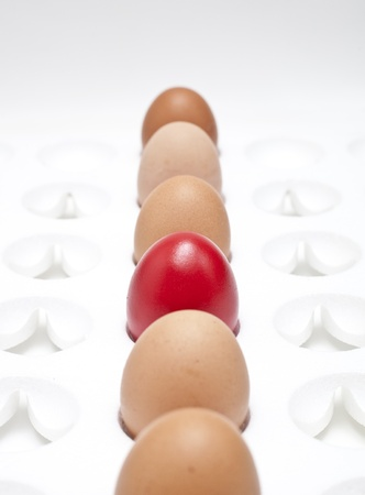 egg carton: close-up, red egg in a row of the brown eggs.