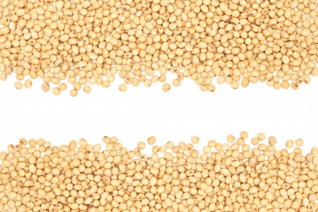 close-up, soybeans background detail.