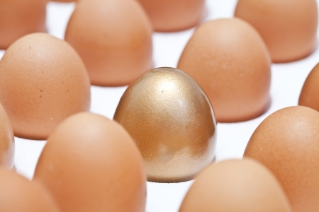 close-up, Golden egg in a row of the brown eggs. photo