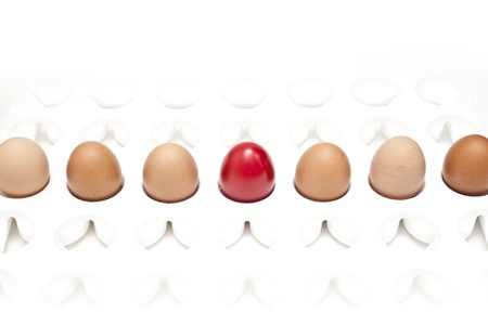 close-up, red egg in a row of the brown eggs. photo