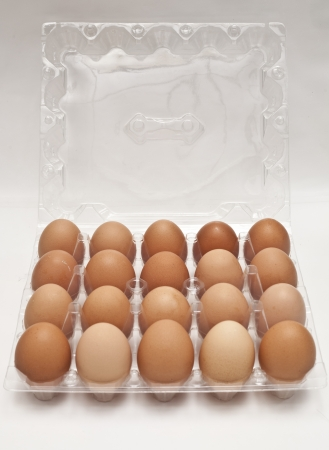 packaged: brown eggs in a carton transparent package.  Stock Photo