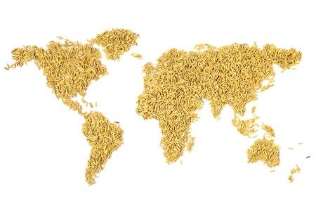 arroz blanco: mapa del mundo hecho formulario arroz con c�scara.
