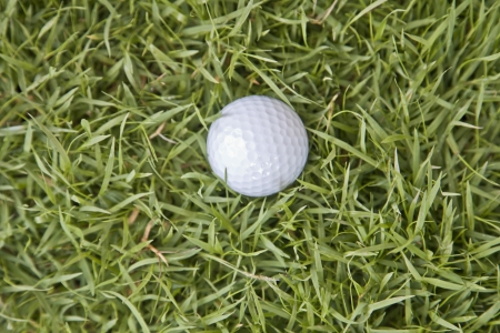 top view Golf ball on  grass photo