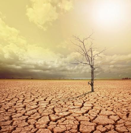sequias: imagen del concepto de calentamiento global Foto de archivo