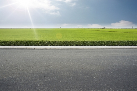 high street: Roadside view and green grass on blue sky.