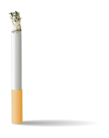 Cigarette isolated on white  Stock Vector - 20732095