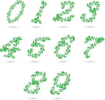 7 9: Vector set illustration a leaves number on white