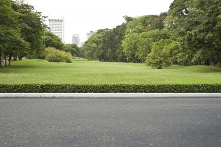 roadside, view in tropical garden park.  Stock Photo