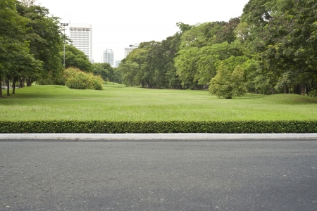 roadside, view in tropical garden park.  photo