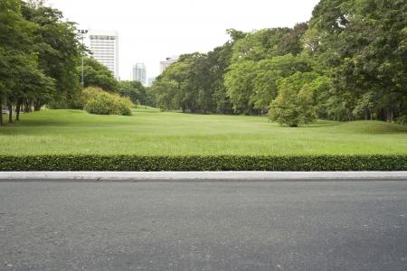roadside, view in tropical garden park.