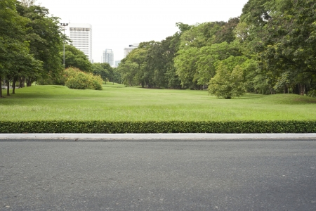 roadside, view in tropical garden park.
