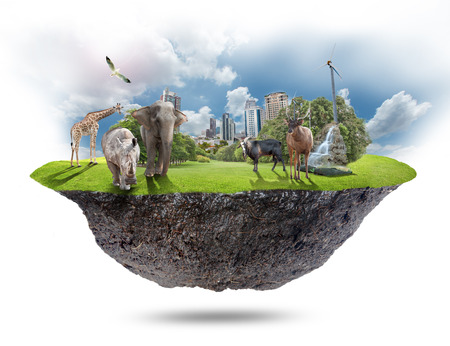 The floating island and animals on white background.  Imagens