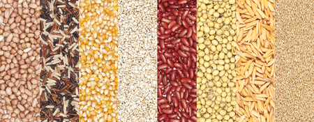frijoles rojos: un conjunto de semillas de cereales fondo de las habas